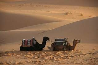 Marruecos038