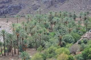Marruecos051